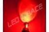 Ampoule T20 W21/5W 7443 65 Watts CREE Rouge